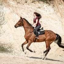 Верховая езда. Конный спорт, в Лыткарино