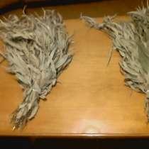 Эвкалиптовые веники с Абхазии, в Сочи