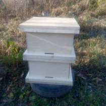 Улей для пчел, в Владивостоке