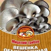 Мицелий (семена) вешенки. Простой в выращивании гриб, в Иркутске
