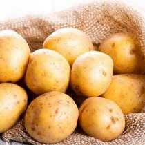 Картошка, капуста, свекла, мелкий опт и соленья, в Москве
