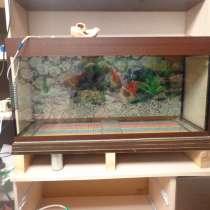 Продам новый аквариум на 170 литров, в Смоленске