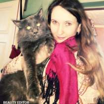 Котенок мейн-кун, в Таганроге