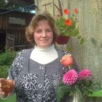 Марина, 44 года, хочет познакомиться – для серьезных отношений, в Златоусте