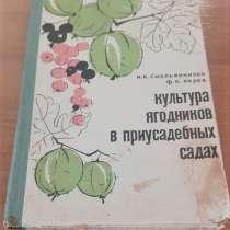 Культура ягодников в приусадебных садах Смольянинова 1966г, в г.Костанай
