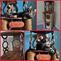 Изготовление комплексов и домиков для кошек на заказ, в Ростове-на-Дону