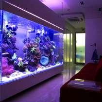 Обслуживание аквариумов, в г.Донецк