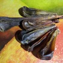 Желчь дикого кабана, в Перми