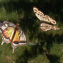 Бабочка декоративная, в Набережных Челнах