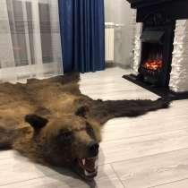 Шкура медведя, в Иванове