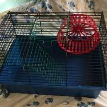 Клетка для мышей, хомяков, в Санкт-Петербурге