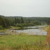 Отдых в деревне, в Архангельске