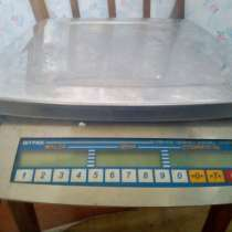 Электронные весы, в Анне