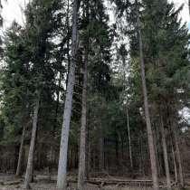 Лесной участок 17 соток по Новорижскому шоссе, в Истре