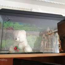 Продаются 2 аквариума вместе с акссесуароми, в Саранске