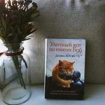 Уличный кот по имени Боб, в Хабаровске
