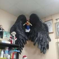 Идеи для фотосессии. Черные крылья отдам в аренду в Самаре, в Самаре