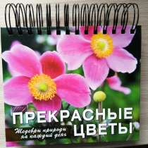 Перекидной календарь, в Твери