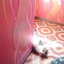 Продается 4-х комнатная, двухэтажная квартира в Гомеле, в г.Гомель