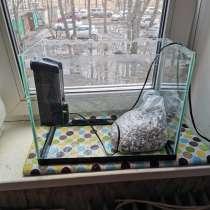 Аквариум, в Владивостоке