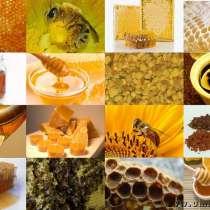 Куплю продукты пчеловодства, в Ульяновске