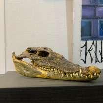 Череп крокодила, в Екатеринбурге