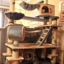 Дом кота алигарха, в Новосибирске