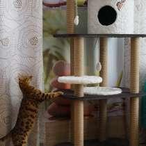 Домик для кошек с гамаком, в Новосибирске