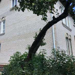 Дом в Белорусии, в г.Орша