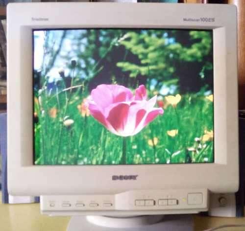 Монитор Multiscan CPD-100ES 15