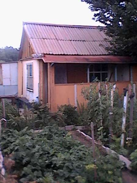 Продам дачу в Дачном микрорайоне города Павлодара с урожаем!