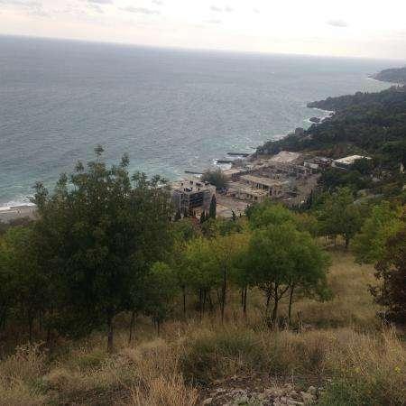 Продается шикарный земельный участок площадью 8 соток в субтропическом курортном городе Алупка