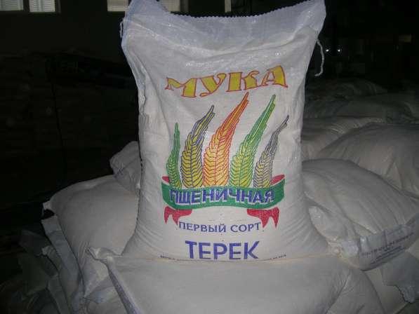 Мука пшеничная Терек на экспорт и по РФ