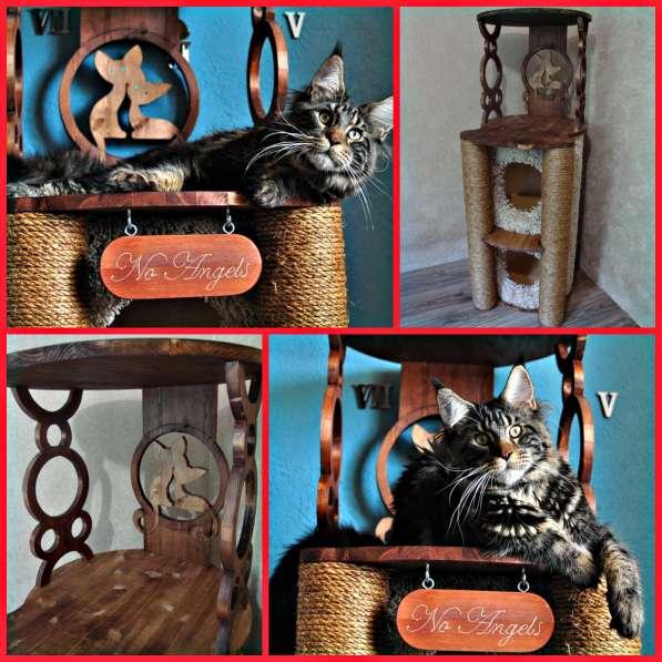 Изготовление комплексов и домиков для кошек на заказ