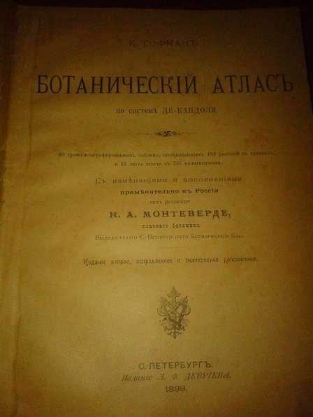 Ботанический атлас по системе Де-Кондоля 1899 в фото 5