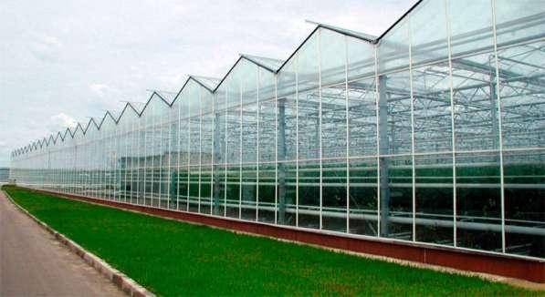 Ищу инвестора для Строительства промышленной теплицы
