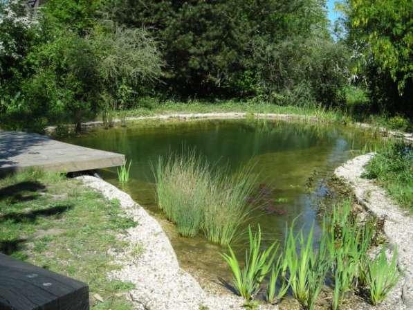 Создание естественных водоемов Плавающие Клумбы Био-Фильтры в Сочи фото 4
