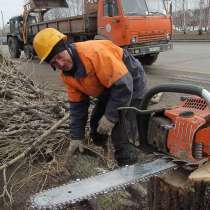 Спиливание деревьев, земляные работы, демонтаж, заборы, в Воронеже