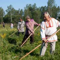 Покос травы триммером, в Вологде