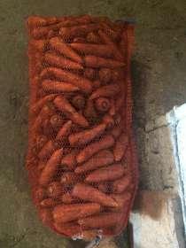Морковь шантане оптом, в Новосибирске