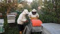 Мёд, в г.Нефтекамск