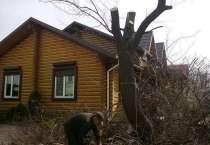Спиливаем деревья качественно и быстро любого масштаба, в Воронеже