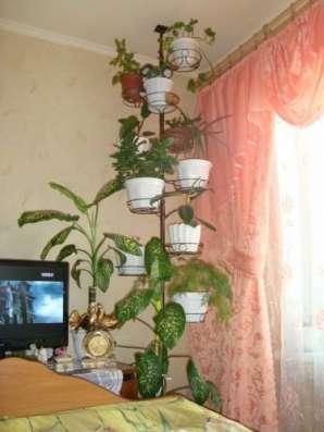 Подставки-распоры для цветов в г. Пушкино Фото 1