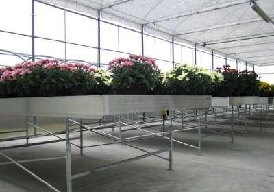 Культивационныезаливные столы Ева-ЛэндАгротехника в Набережных Челнах Фото 4