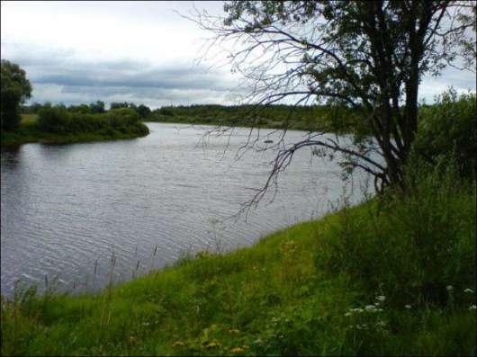 участок на берегу реки Шелонь в 4-х км от г .Сольцы. дер