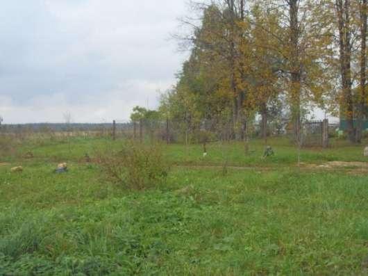 Продаётся земельный участок 60 соток в деревне Настасьино, Можайский р-он, 120 км от МКАД по Минскому,Можайскому шоссе. Фото 3