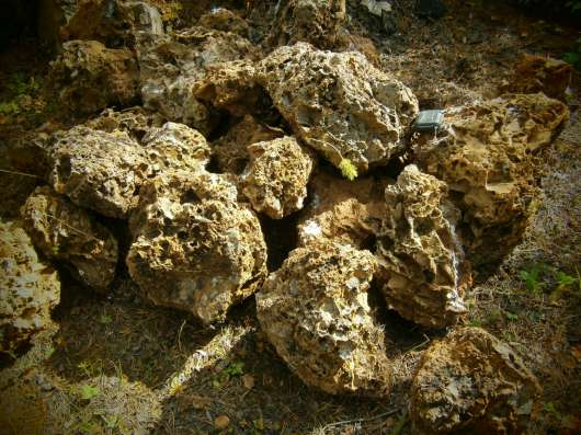 Ландшафтный камень дырчатый