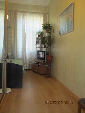 Продам бругмансию в Санкт-Петербурге Фото 2