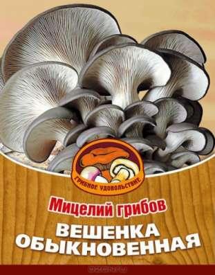 Мицелий (семена) вешенки. Простой в выращивании гриб