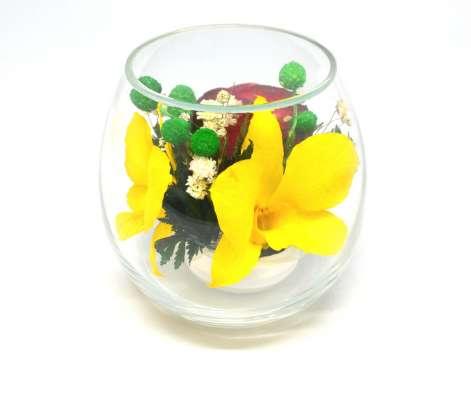 Композиции из живых орхидей желтых
